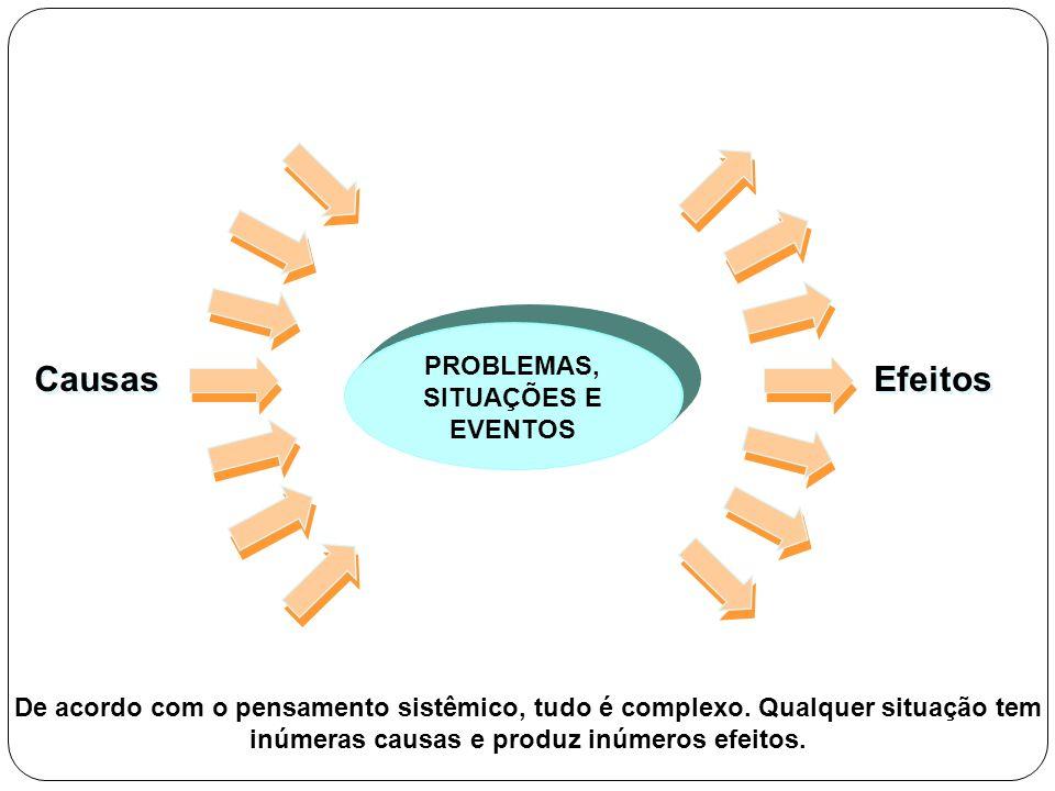 PROBLEMAS, SITUAÇÕES E EVENTOS Causas Efeitos De acordo com o pensamento sistêmico, tudo é complexo. Qualquer situação tem inúmeras causas e produz in