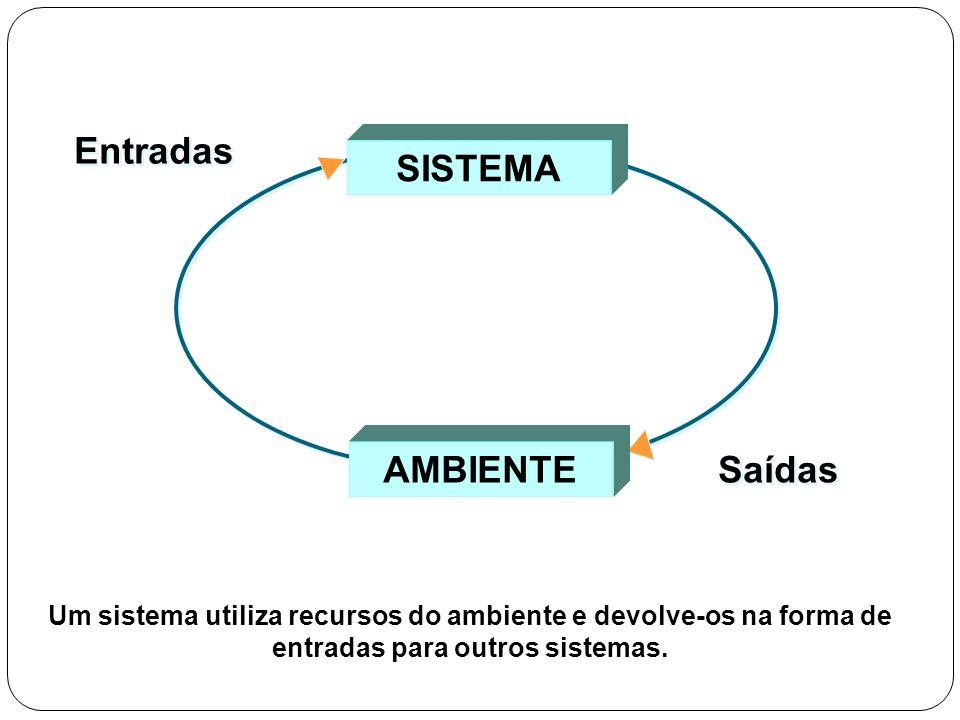 AMBIENTE SISTEMA Entradas Saídas Um sistema utiliza recursos do ambiente e devolve-os na forma de entradas para outros sistemas.