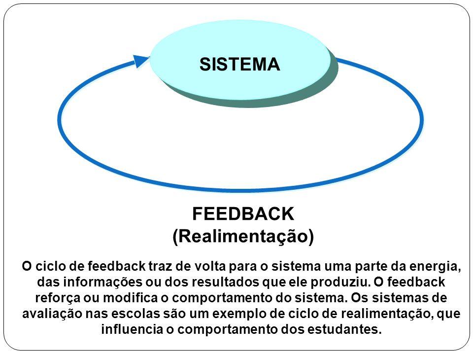 FEEDBACK (Realimentação) SISTEMA O ciclo de feedback traz de volta para o sistema uma parte da energia, das informações ou dos resultados que ele prod