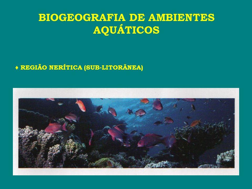 REGIÃO NERÍTICA (SUB-LITORÂNEA) BIOGEOGRAFIA DE AMBIENTES AQUÁTICOS