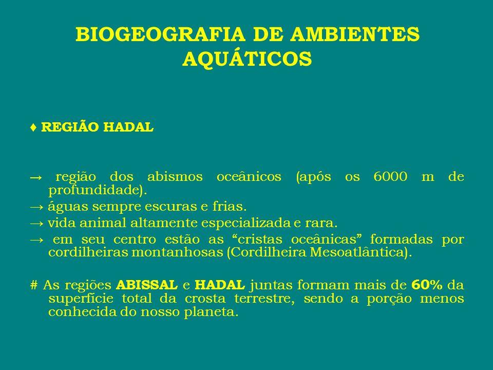 REGIÃO HADAL região dos abismos oceânicos (após os 6000 m de profundidade). águas sempre escuras e frias. vida animal altamente especializada e rara.