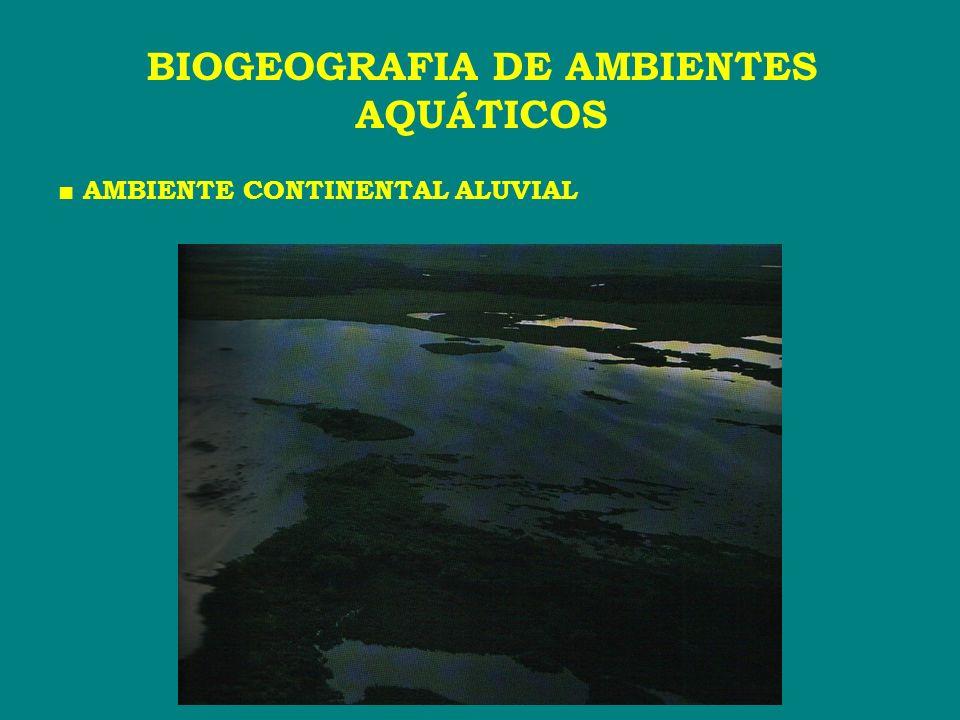 AMBIENTE CONTINENTAL ALUVIAL BIOGEOGRAFIA DE AMBIENTES AQUÁTICOS