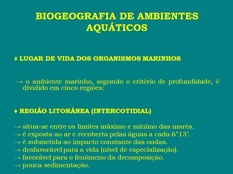 # LUGAR DE VIDA DOS ORGANISMOS MARINHOS o ambiente marinho, segundo o critério de profundidade, é dividido em cinco regiões: REGIÃO LITORÂNEA (INTERCO