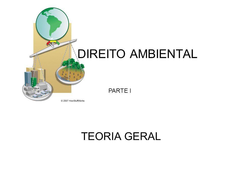 DIREITO AMBIENTAL TEORIA GERAL PARTE I