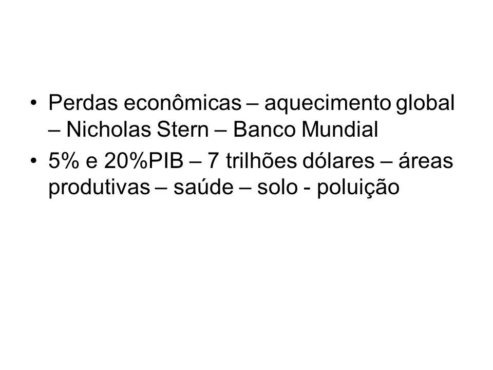 Perdas econômicas – aquecimento global – Nicholas Stern – Banco Mundial 5% e 20%PIB – 7 trilhões dólares – áreas produtivas – saúde – solo - poluição