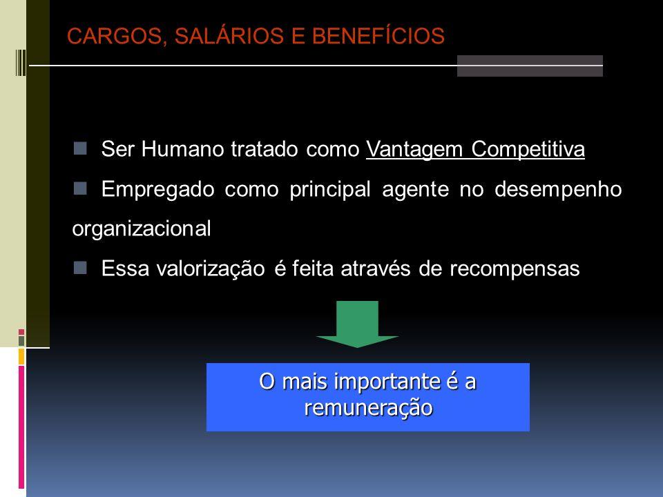 Ser Humano tratado como Vantagem Competitiva Empregado como principal agente no desempenho organizacional Essa valorização é feita através de recompen