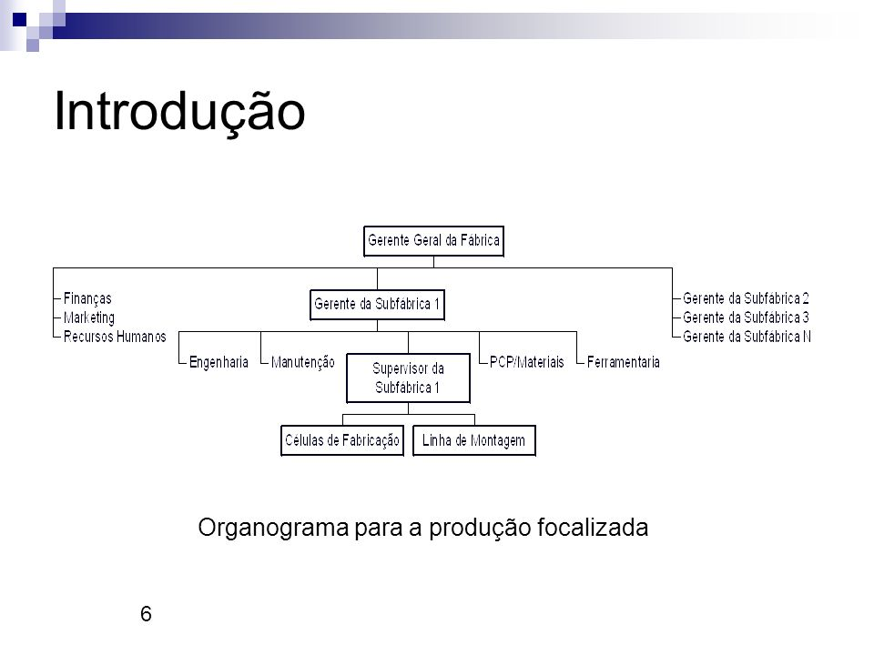 6 Introdução Organograma para a produção focalizada