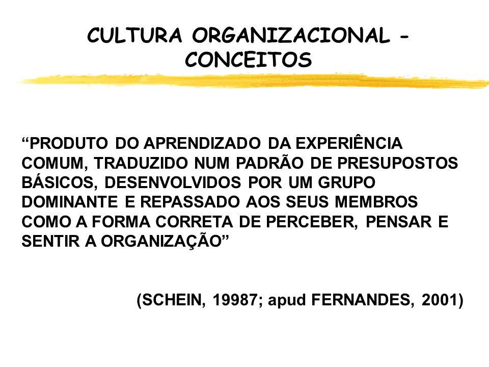 CULTURA ORGANIZACIONAL - CONCEITOS CONJUNTO DE CRENÇAS E PERCEPÇÕES QUE DEFINEM AS RELAÇÕES ENTRE GRUPOS DE UMA ORGANIZAÇÃO DE FORMA EXPLÍCITA E IMPLÍCITA (FERNANDES, 2001) D VISÃO DE MUNDO D PERCEPÇÃO DE MUNDO D VALORES D RELAÇÕES COM O PODER