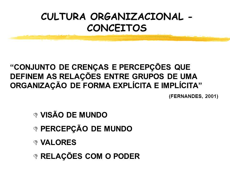 CULTURA ORGANIZACIONAL ORGANIZAÇÕES DE REALIZADORES Organizações que Aprendem .