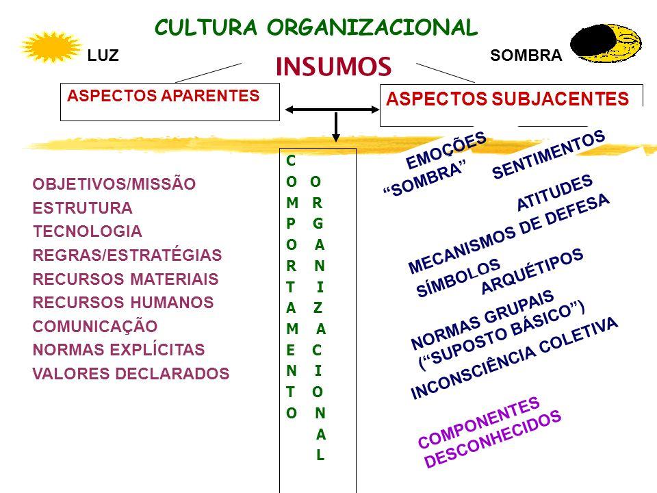 CULTURA ORGANIZACIONAL INSUMOS ASPECTOS SUBJACENTES ASPECTOS APARENTES C O M R P G O A R N T I A Z M A E C N I T O O N A L EMOÇÕES NORMAS GRUPAIS (SUP