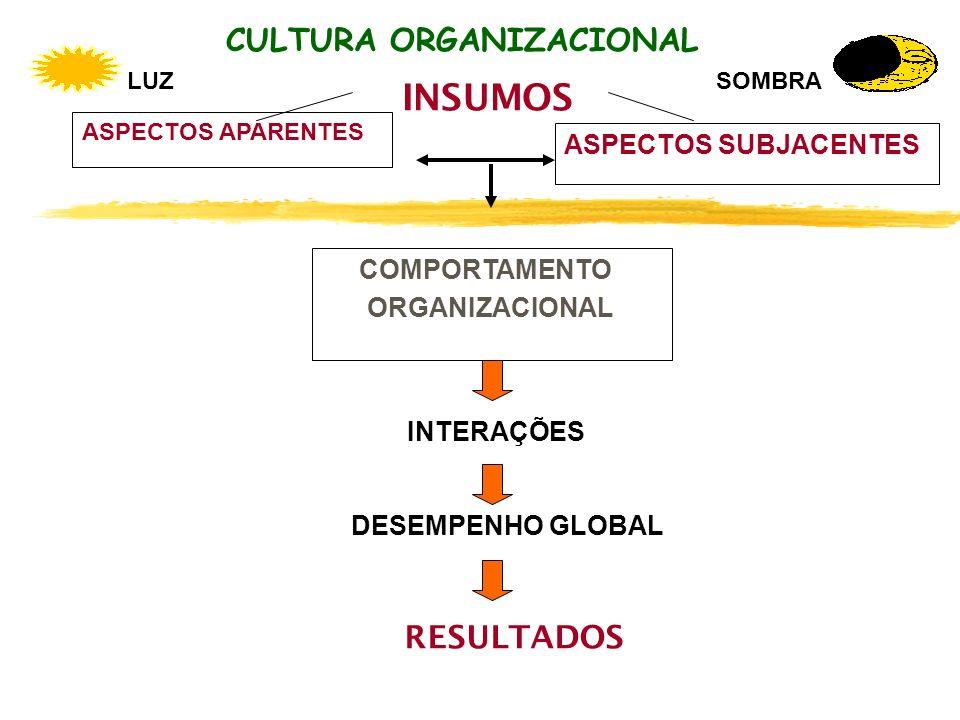 CULTURA ORGANIZACIONAL INSUMOS ASPECTOS SUBJACENTES ASPECTOS APARENTES COMPORTAMENTO ORGANIZACIONAL INTERAÇÕES DESEMPENHO GLOBAL RESULTADOS LUZSOMBRA