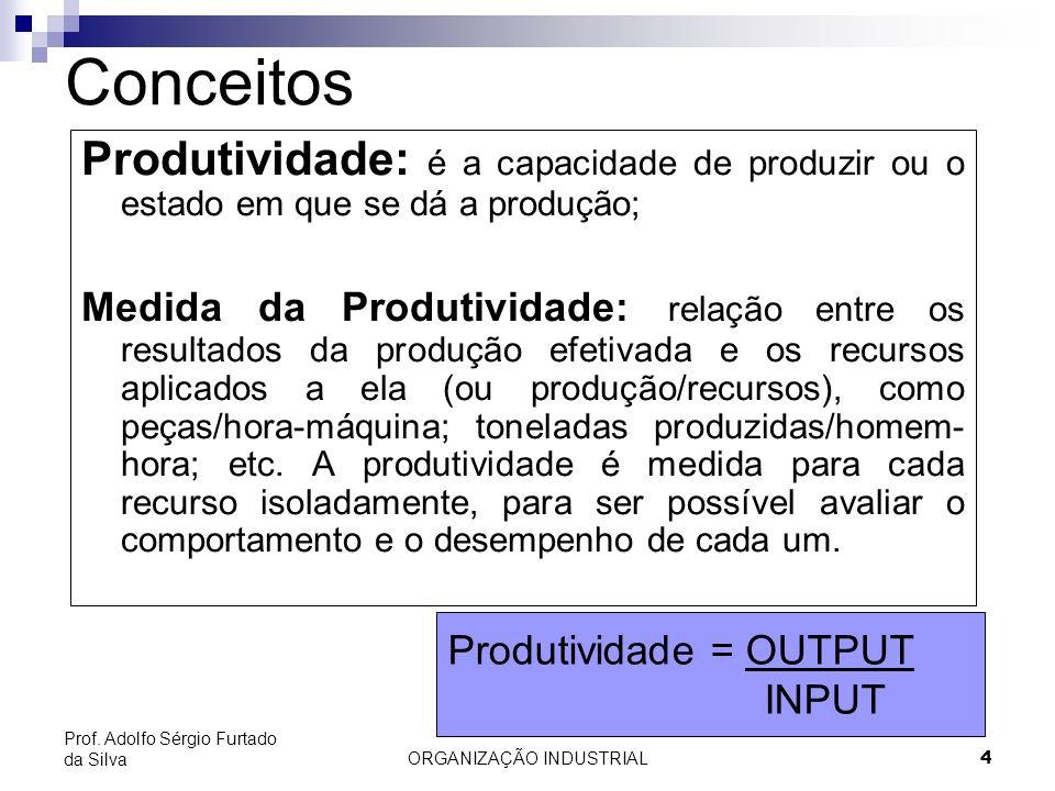 ORGANIZAÇÃO INDUSTRIAL4 Prof. Adolfo Sérgio Furtado da Silva Conceitos Produtividade: é a capacidade de produzir ou o estado em que se dá a produção;