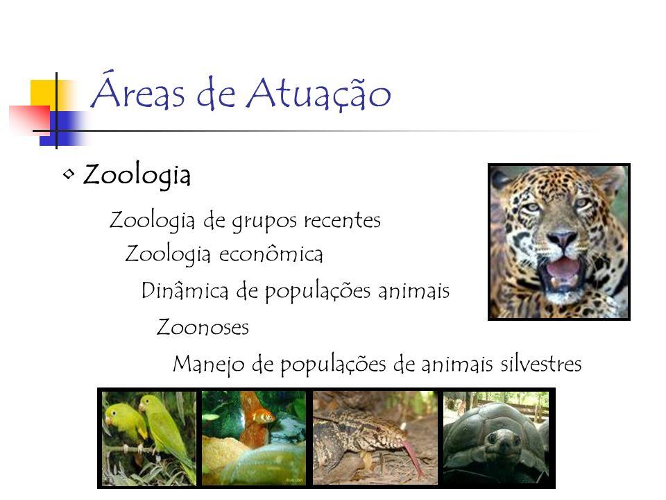 Áreas de Atuação Zoologia Zoologia de grupos recentes Zoologia econômica Dinâmica de populações animais Zoonoses Manejo de populações de animais silve