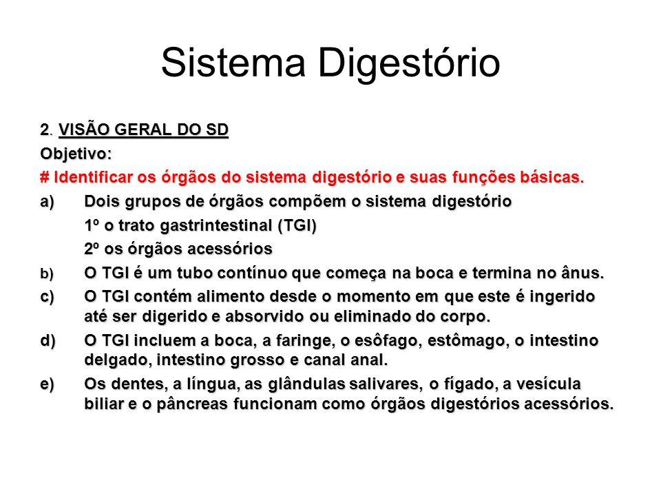 Sistema Digestório e)A especialidade médica que lida com a estrutura, a função, o diagnóstico e o tratamento das doenças do estômago e dos intestinos