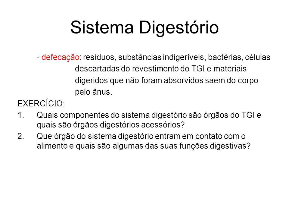 Sistema Digestório - defecação: resíduos, substâncias indigeríveis, bactérias, células descartadas do revestimento do TGI e materiais digeridos que não foram absorvidos saem do corpo pelo ânus.