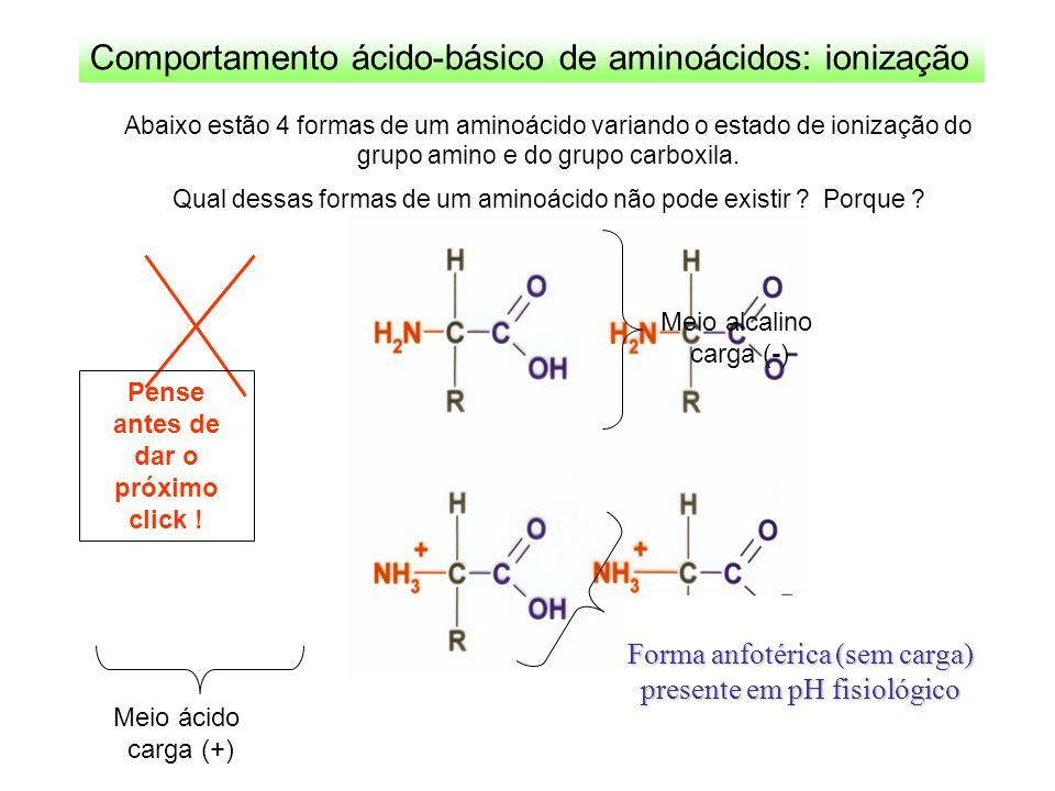 Comportamento ácido-básico de aminoácidos: ionização Meio alcalino carga (-) Meio ácido carga (+) Forma anfotérica (sem carga) presente em pH fisiológ