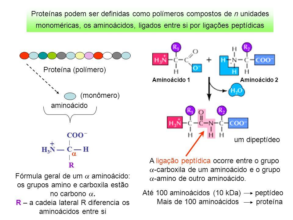 Proteínas podem ser definidas como polímeros compostos de n unidades monoméricas, os aminoácidos, ligados entre si por ligações peptídicas A ligação p