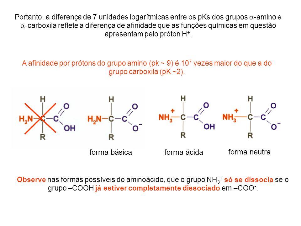Portanto, a diferença de 7 unidades logarítmicas entre os pKs dos grupos -amino e -carboxila reflete a diferença de afinidade que as funções químicas
