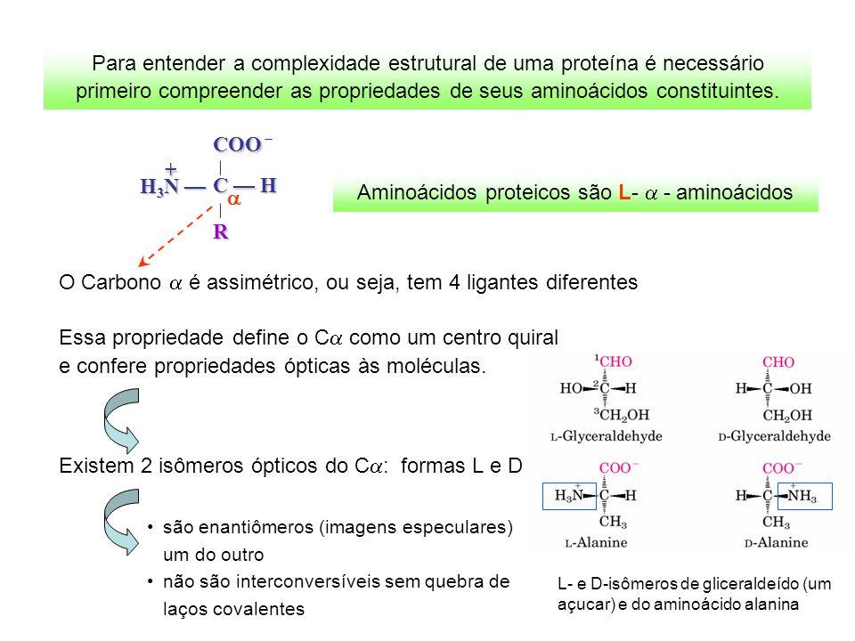 Aminoácidos proteicos são L- - aminoácidos Para entender a complexidade estrutural de uma proteína é necessário primeiro compreender as propriedades d