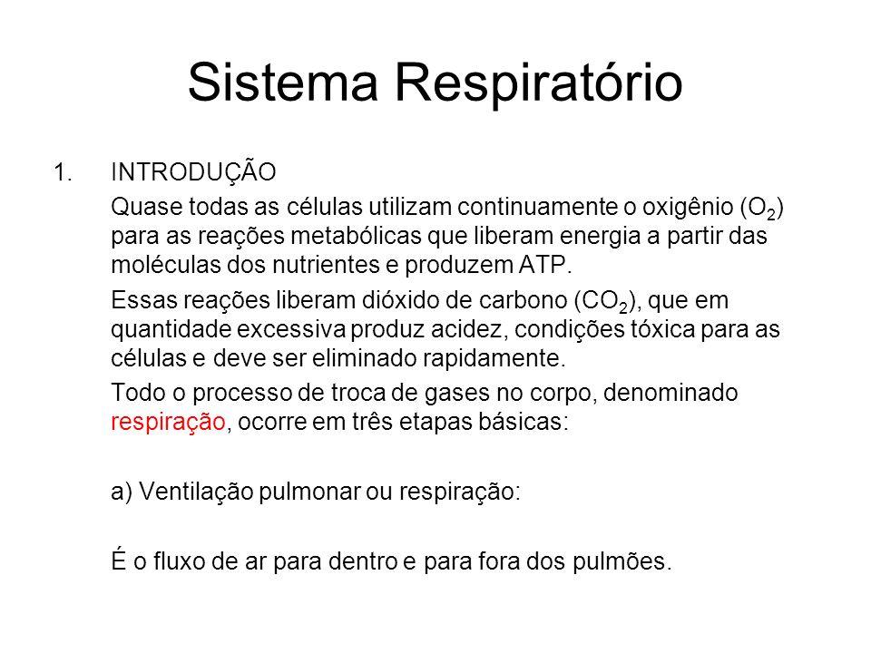 Sistema Respiratório 1.INTRODUÇÃO Quase todas as células utilizam continuamente o oxigênio (O 2 ) para as reações metabólicas que liberam energia a pa