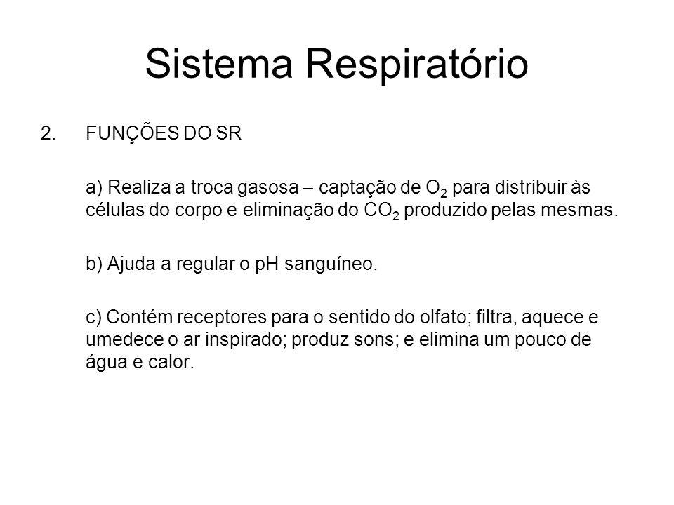 Sistema Respiratório 2.FUNÇÕES DO SR a) Realiza a troca gasosa – captação de O 2 para distribuir às células do corpo e eliminação do CO 2 produzido pe