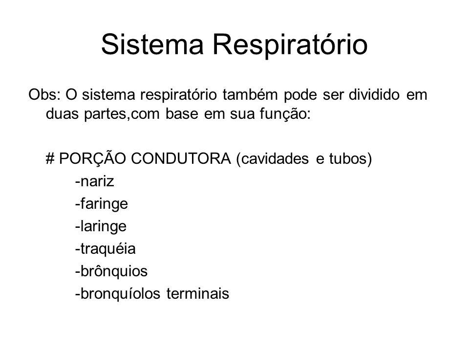 Sistema Respiratório Obs: O sistema respiratório também pode ser dividido em duas partes,com base em sua função: # PORÇÃO CONDUTORA (cavidades e tubos