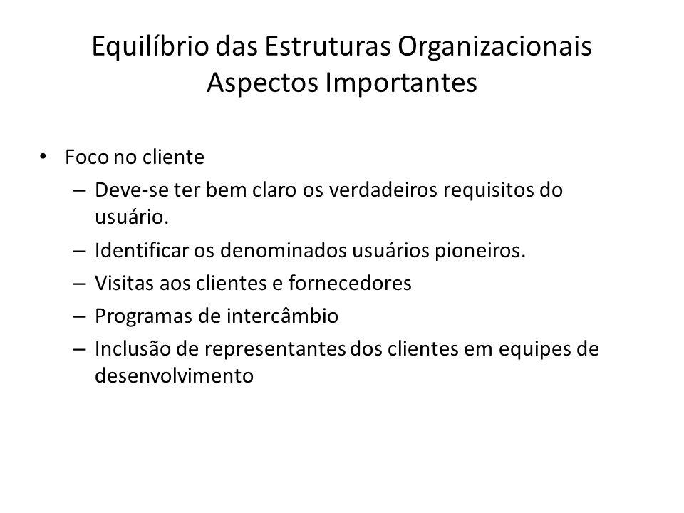 Equilíbrio das Estruturas Organizacionais Aspectos Importantes Foco no cliente – Deve-se ter bem claro os verdadeiros requisitos do usuário.