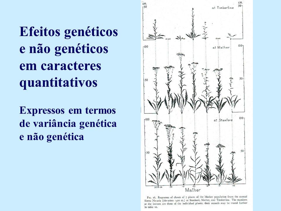 Efeitos genéticos e não genéticos em caracteres quantitativos Expressos em termos de variância genética e não genética
