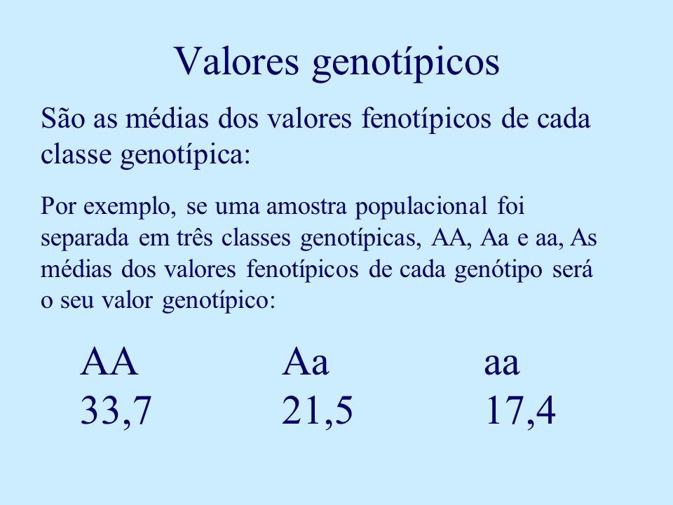 Valores genotípicos São as médias dos valores fenotípicos de cada classe genotípica: Por exemplo, se uma amostra populacional foi separada em três classes genotípicas, AA, Aa e aa, As médias dos valores fenotípicos de cada genótipo será o seu valor genotípico: AAAaaa 33,721,517,4