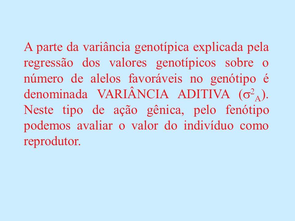 A parte da variância genotípica explicada pela regressão dos valores genotípicos sobre o número de alelos favoráveis no genótipo é denominada VARIÂNCIA ADITIVA ( 2 A ).