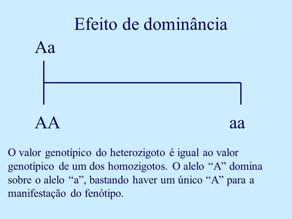 Efeito de dominância AA Aa aa O valor genotípico do heterozigoto é igual ao valor genotípico de um dos homozigotos. O alelo A domina sobre o alelo a,