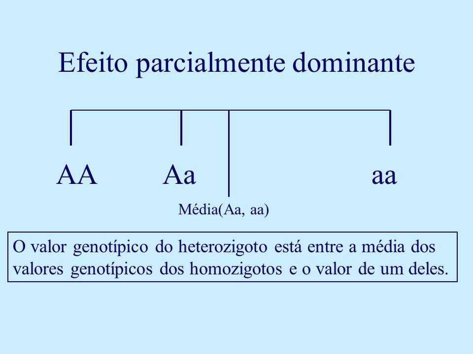 Efeito parcialmente dominante AAAaaa O valor genotípico do heterozigoto está entre a média dos valores genotípicos dos homozigotos e o valor de um del