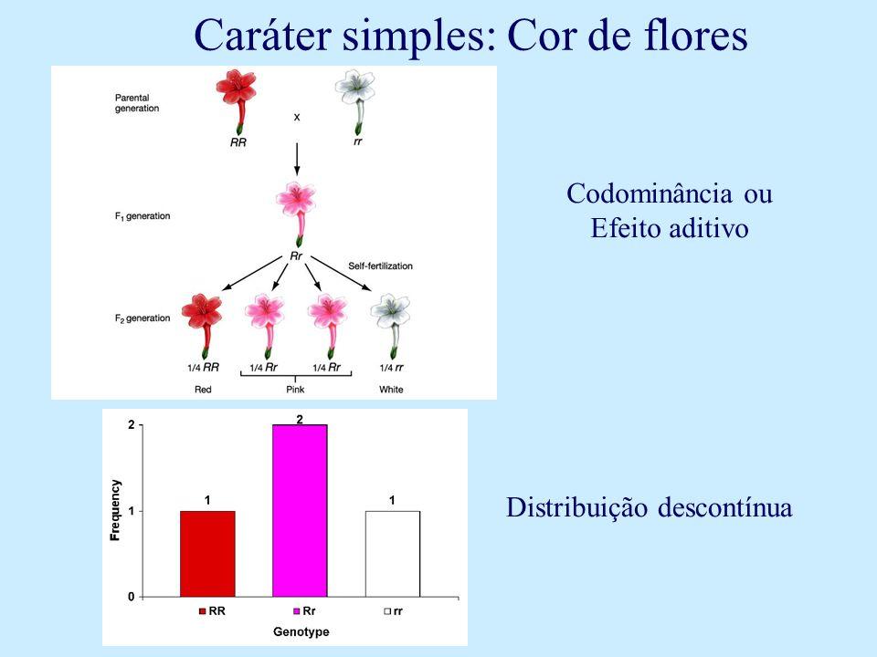 Distribuição descontínua Codominância ou Efeito aditivo Caráter simples: Cor de flores