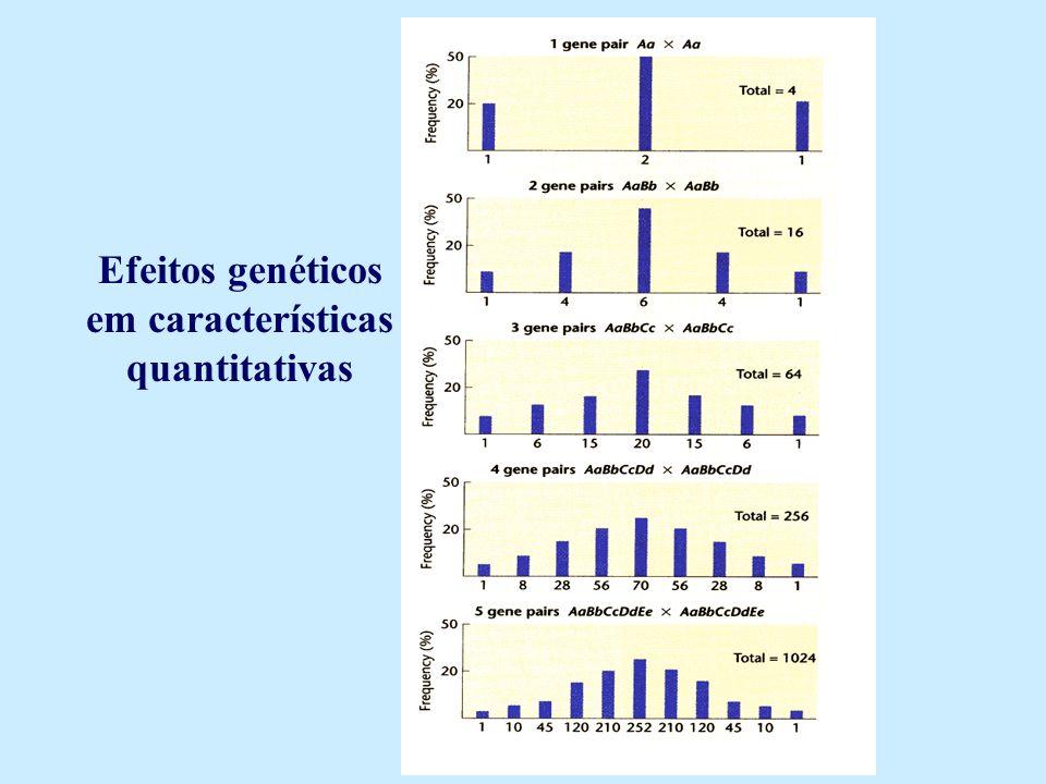 Efeitos genéticos em características quantitativas