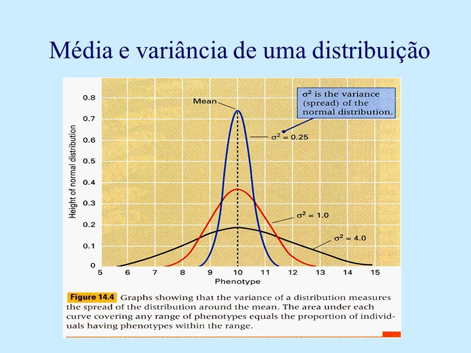 Portanto: S 2 P = S 2 A + S 2 D + S 2 I + S 2 E + { Cov} Onde: S 2 P = Variância fenotípica; S 2 A =Variância aditiva; S 2 D = Variância devida à dominância; S 2 I = Variância devida à epistasia; S 2 E = Variância devida ao ambiente; { Cov} = Soma das diferentes covariâncias;