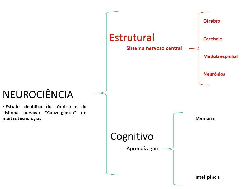 NEUROCIÊNCIA Cognitivo Memória Inteligência Aprendizagem Estudo científico do cérebro e do sistema nervoso Convergência de muitas tecnologias Estrutur