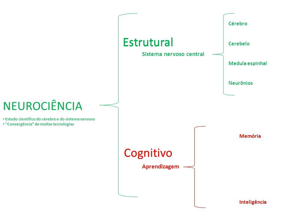Estrutural Sistema nervoso central Cérebro Cerebelo Medula espinhal Neurônios Estrutural NEUROCIÊNCIA Cognitivo Memória Inteligência Aprendizagem Cogn