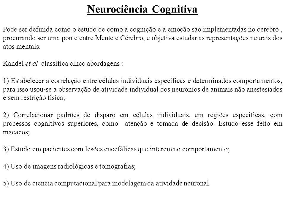 Neurociência Cognitiva Pode ser definida como o estudo de como a cognição e a emoção são implementadas no cérebro, procurando ser uma ponte entre Ment