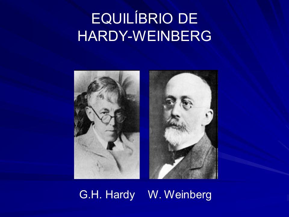 EQUILÍBRIO DE HARDY-WEINBERG G.H. Hardy W. Weinberg