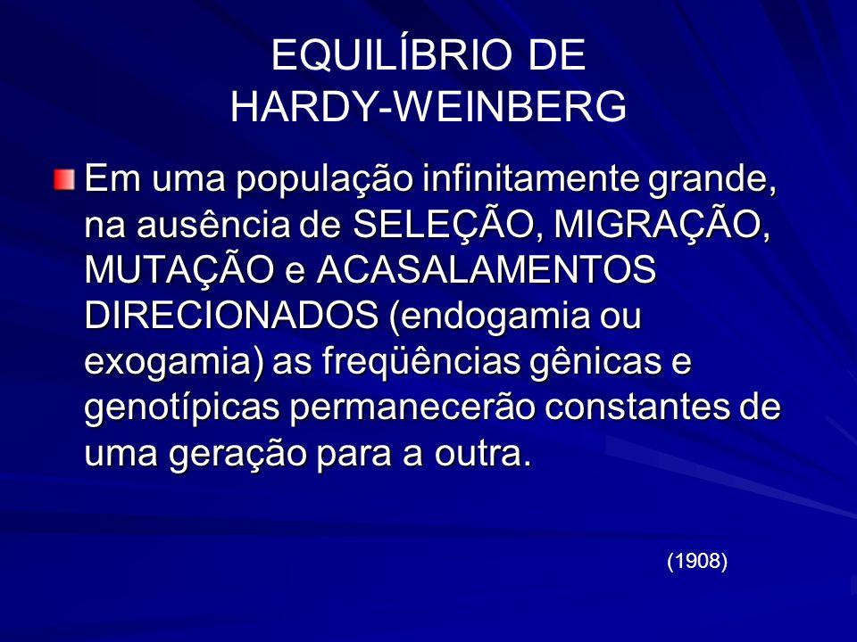 EQUILÍBRIO DE HARDY-WEINBERG (1908) Em uma população infinitamente grande, na ausência de SELEÇÃO, MIGRAÇÃO, MUTAÇÃO e ACASALAMENTOS DIRECIONADOS (end