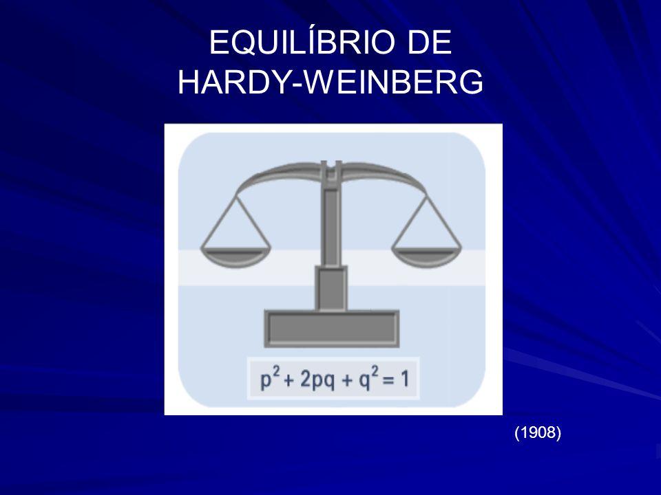EQUILÍBRIO DE HARDY-WEINBERG (1908)