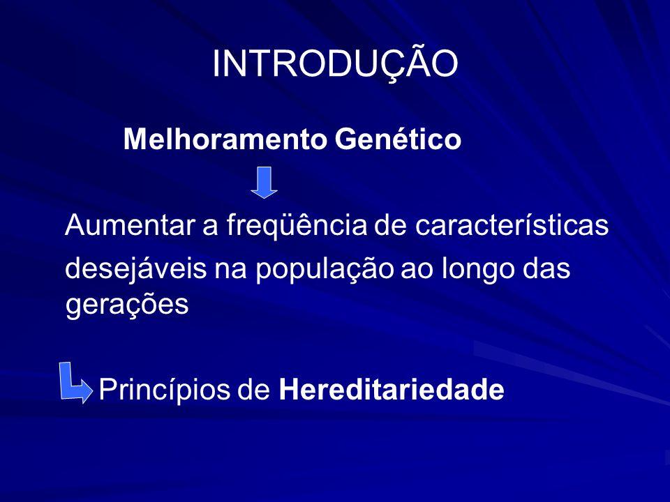 INTRODUÇÃO Melhoramento Genético Aumentar a freqüência de características desejáveis na população ao longo das gerações Princípios de Hereditariedade