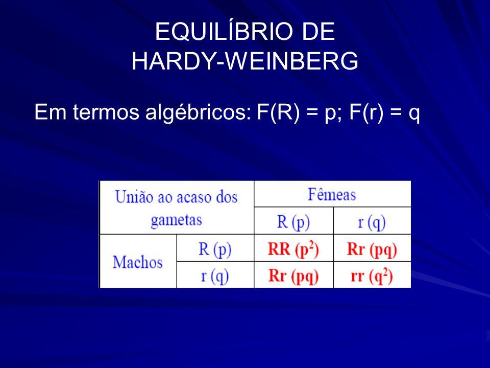 EQUILÍBRIO DE HARDY-WEINBERG Em termos algébricos: F(R) = p; F(r) = q
