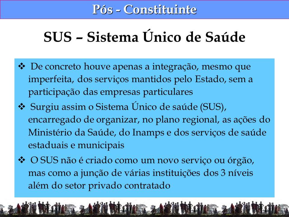 Pós - Constituinte De concreto houve apenas a integração, mesmo que imperfeita, dos serviços mantidos pelo Estado, sem a participação das empresas par