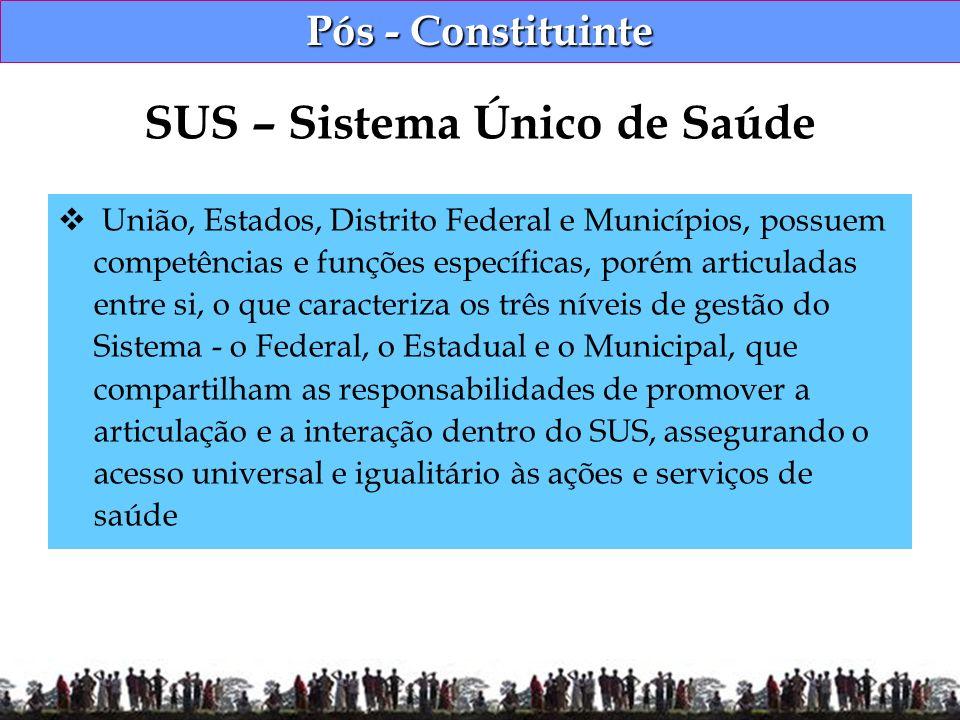 Pós - Constituinte União, Estados, Distrito Federal e Municípios, possuem competências e funções específicas, porém articuladas entre si, o que caract
