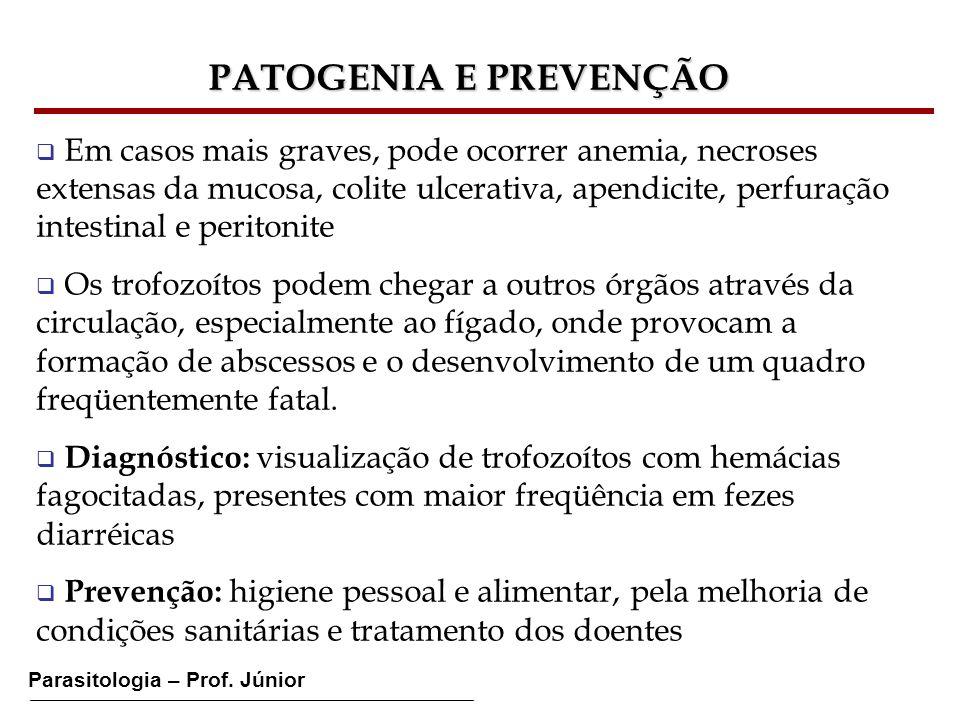 Parasitologia – Prof. Júnior PATOGENIA E PREVENÇÃO Em casos mais graves, pode ocorrer anemia, necroses extensas da mucosa, colite ulcerativa, apendici