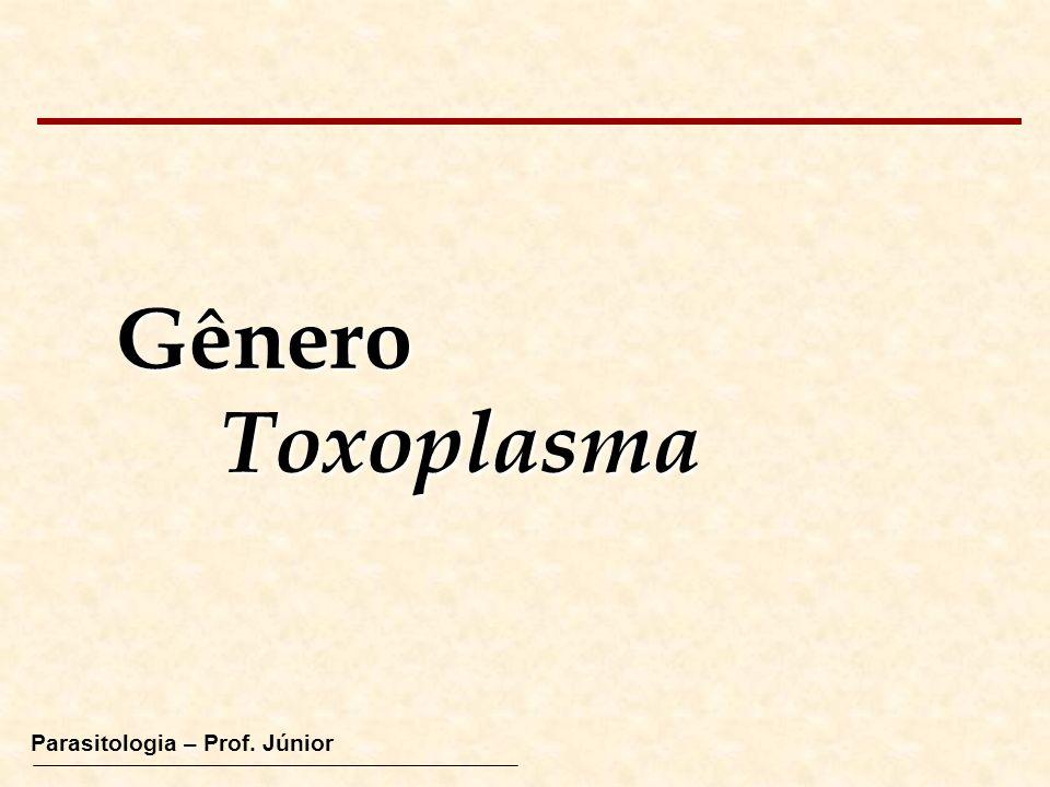 GêneroToxoplasma