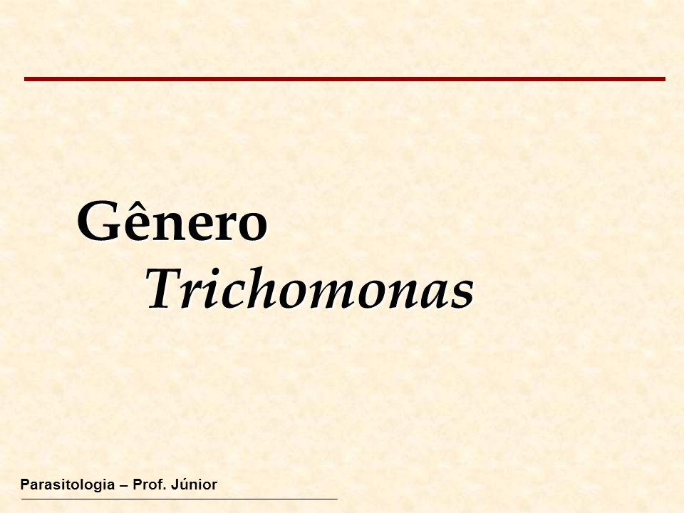 Parasitologia – Prof. Júnior GêneroTrichomonas