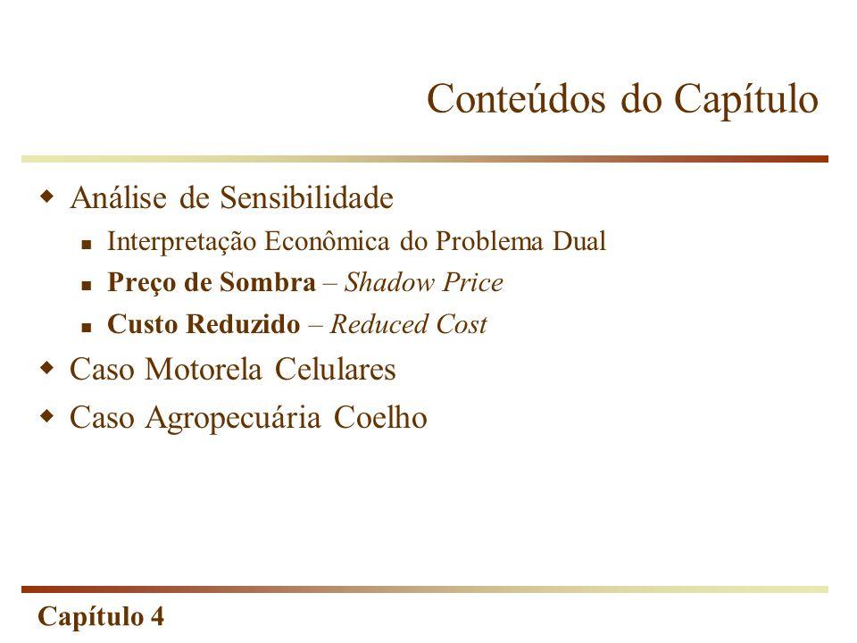 Capítulo 4 Análise de Sensibilidade A análise de sensibilidade serve também para amenizar a hipótese de certeza nos coeficientes e constantes.