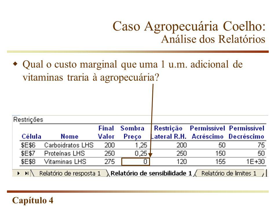 Capítulo 4 Qual o custo marginal que uma 1 u.m. adicional de vitaminas traria à agropecuária? Caso Agropecuária Coelho: Análise dos Relatórios